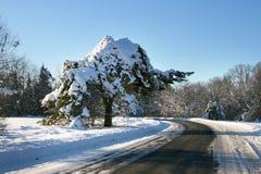 οδικός χειμώνας επαρχίας Στοκ Εικόνες