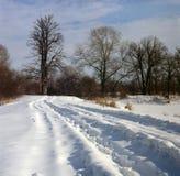 οδικός χειμώνας πεδίων στοκ εικόνα