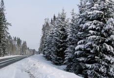 οδικός χειμώνας Στοκ εικόνες με δικαίωμα ελεύθερης χρήσης