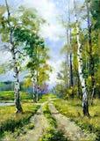 οδικό δάσος Στοκ Εικόνες
