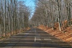 Οδικό Drive φθινοπώρου Στοκ Φωτογραφία