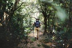 Οδοιπορία ατόμων σε ένα δάσος στοκ φωτογραφίες με δικαίωμα ελεύθερης χρήσης