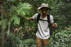 Οδοιπορία ατόμων σε ένα δάσος στοκ εικόνα