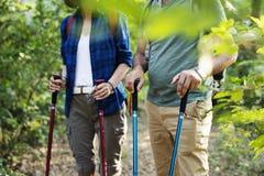 Οδοιπορία ζεύγους μαζί υπαίθρια στο δάσος στοκ εικόνα