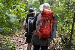 Οδοιπορία ζεύγους σε ένα δάσος στοκ εικόνες
