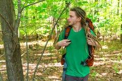 Οδοιπορία οδοιπόρων μέσω του δάσους στοκ εικόνες