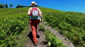 Οδοιπορία πεζοπορίας στα βουνά Οπισθοσκόπος του πίσω μέρους του περπατήματος γυναικών κατά μήκος του τρόπου με ένα σακίδιο πλάτης φιλμ μικρού μήκους
