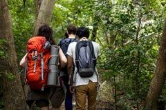 Οδοιπορία Backpackers σε ένα δάσος στοκ φωτογραφία