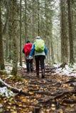 Οδοιπόροι στο δάσος φθινοπώρου Στοκ Φωτογραφία