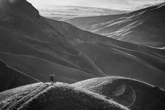 Οδοιπόρος γυναικών που κοιτάζει στην κοιλάδα βουνών Στοκ Φωτογραφία
