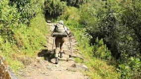 Οδοιπόρος που περπατά στο ίχνος οδοιπορίας στο στρατόπεδο βάσεων Annapurna, Ιμαλάια, Νεπάλ POV φιλμ μικρού μήκους