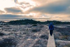 Οδοιπόρος στο ξύλινο παγωμένο θαλάσσιος περίπατος χειμερινό τοπίο στοκ εικόνα με δικαίωμα ελεύθερης χρήσης