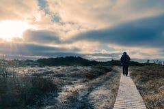 Οδοιπόρος στο ξύλινο παγωμένο θαλάσσιος περίπατος χειμερινό τοπίο στοκ φωτογραφίες με δικαίωμα ελεύθερης χρήσης