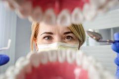 Οδοντίατρος πέρα από το ανοικτό υπομονετικό στόμα ` s που κοιτάζει στα δόντια Στοματική φροντίδα Ι στοκ φωτογραφία με δικαίωμα ελεύθερης χρήσης