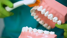 Οδοντίατρος που χρησιμοποιεί τη χλεύη και την οδοντόβουρτσα σαγονιών για να διδάξει τον υπομονετικό σωστό καθαρισμό των δοντιών φιλμ μικρού μήκους