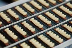 οδοντικά δείγματα μοσχ&epsilon στοκ εικόνες