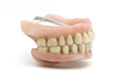 οδοντική πρόσθεση Στοκ Εικόνες
