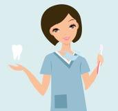 Οδοντικός υγιεινολόγος Στοκ εικόνες με δικαίωμα ελεύθερης χρήσης