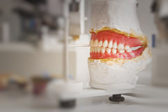 οδοντικό πιάτο στοκ εικόνα