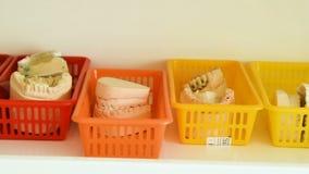 Οδοντοστοιχία από το γύψο στο ράφι φιλμ μικρού μήκους