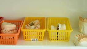 Οδοντοστοιχία από το γύψο στο ράφι απόθεμα βίντεο