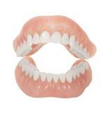 οδοντοστοιχίες Στοκ εικόνα με δικαίωμα ελεύθερης χρήσης