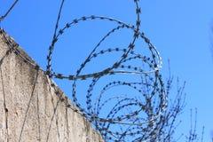 Οδοντωτός - καλώδιο στο φράκτη με το μπλε ουρανό, η έννοια της φυλακής, σωτηρία, διάστημα αντιγράφων στοκ εικόνες