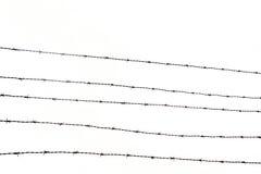 οδοντωτό καλώδιο φραγών Στοκ Φωτογραφίες