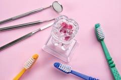 Οδοντόβουρτσες, οδοντικά όργανα και πρότυπο δοντιών Στοκ Εικόνα