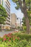 Οδός ηλιοφάνειας στην ανατολική έξοδο Ikebukuro στο Τόκιο Οι καμπύλες πεζοδρομίων που υπογραμμίζονται από τους φραγμούς που ενσωμ στοκ εικόνες