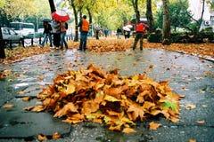 οδός καθαριστών στοκ φωτογραφία