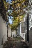 Οδός στην παλαιά πόλη berat στην Αλβανία Στοκ φωτογραφίες με δικαίωμα ελεύθερης χρήσης