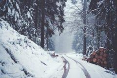 Οδός στο χιονώδες δάσος βουνών στοκ εικόνα