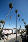 οδός της Angeles Los Στοκ Εικόνες