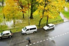 οδών οδικού φθινοπώρου αυτοκινήτων βροχερά ημέρας φύλλα χρώματος δέντρων κίτρινα Στοκ Εικόνες