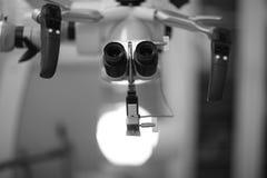 000 οθόνη προσώπων εργαστηριακών μικροσκοπίων αύξησης τριχώματος 300 ηλεκτρονίων φορές Στοκ Εικόνες