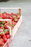 'Οικία' - αναπτυγμένες φράουλες Στοκ φωτογραφίες με δικαίωμα ελεύθερης χρήσης