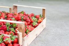 'Οικία' - αναπτυγμένες φράουλες Στοκ Εικόνες