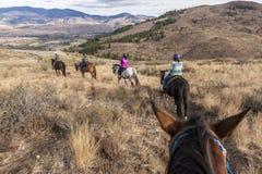 Οικογένεια έξω για έναν γύρο πλατών αλόγου στοκ εικόνες