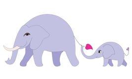 οικογένεια ελεφάντων στοκ εικόνες