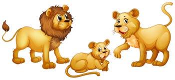 Οικογένεια λιονταριών με χαριτωμένο λίγο cub Στοκ Εικόνες