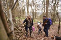 Οικογένεια με τη συλλογή σκυλιών κατοικίδιων ζώων πεσμένος ξύλινος σε ένα ξύλο Στοκ Εικόνα