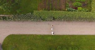 Οικογένεια με το περπάτημα παιδιών στη φύση απόθεμα βίντεο