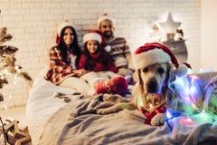 Οικογένεια με το σκυλί στη νέα παραμονή έτους ` s Στοκ φωτογραφία με δικαίωμα ελεύθερης χρήσης
