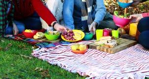 Οικογένεια που έχει picnic στο πάρκο απόθεμα βίντεο