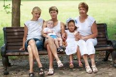 Οικογένεια στο θερινό πάρκο στοκ εικόνες