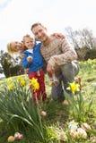 Οικογένεια στο κυνήγι αυγών Πάσχας στο πεδίο Daffodil Στοκ Φωτογραφίες
