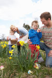 Οικογένεια στο κυνήγι αυγών Πάσχας στο πεδίο Daffodil Στοκ Εικόνα