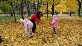 Οικογένεια στο πάρκο φθινοπώρου απόθεμα βίντεο