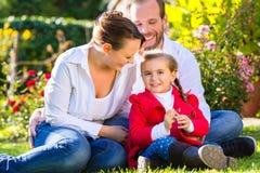 Οικογένεια στο χορτοτάπητα κήπων στοκ εικόνες